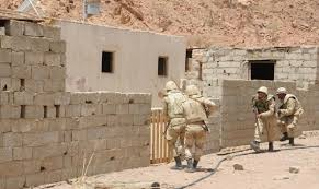 الجيش يطهر سيناء من اللارهابيين