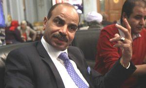 النائب هشام الشعينى
